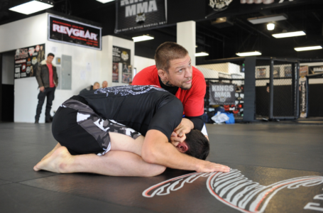 Why Most MMA Trainers Like BJJ Techniques